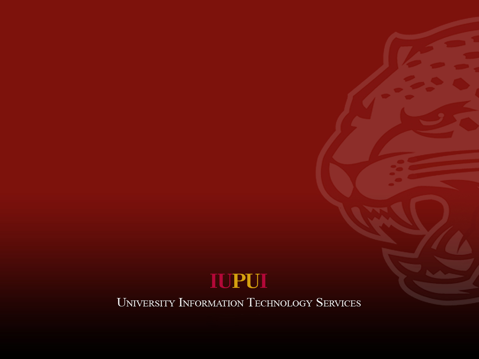 indiana university screensaver 1600x1200
