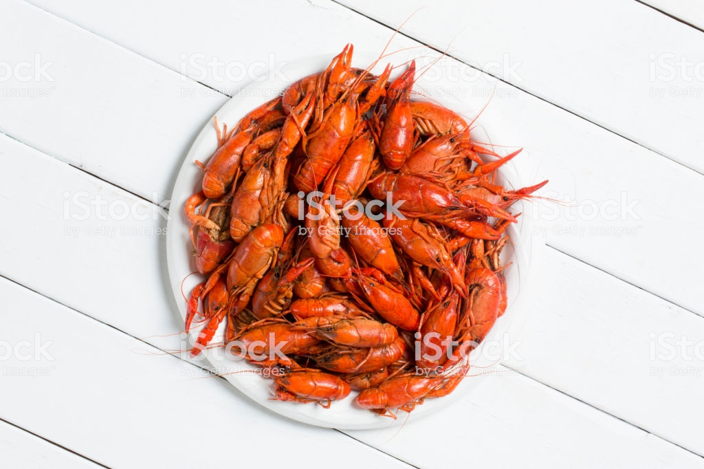 Boiled Crawfish On A White Background Stock Photo   Download Image 1024x682