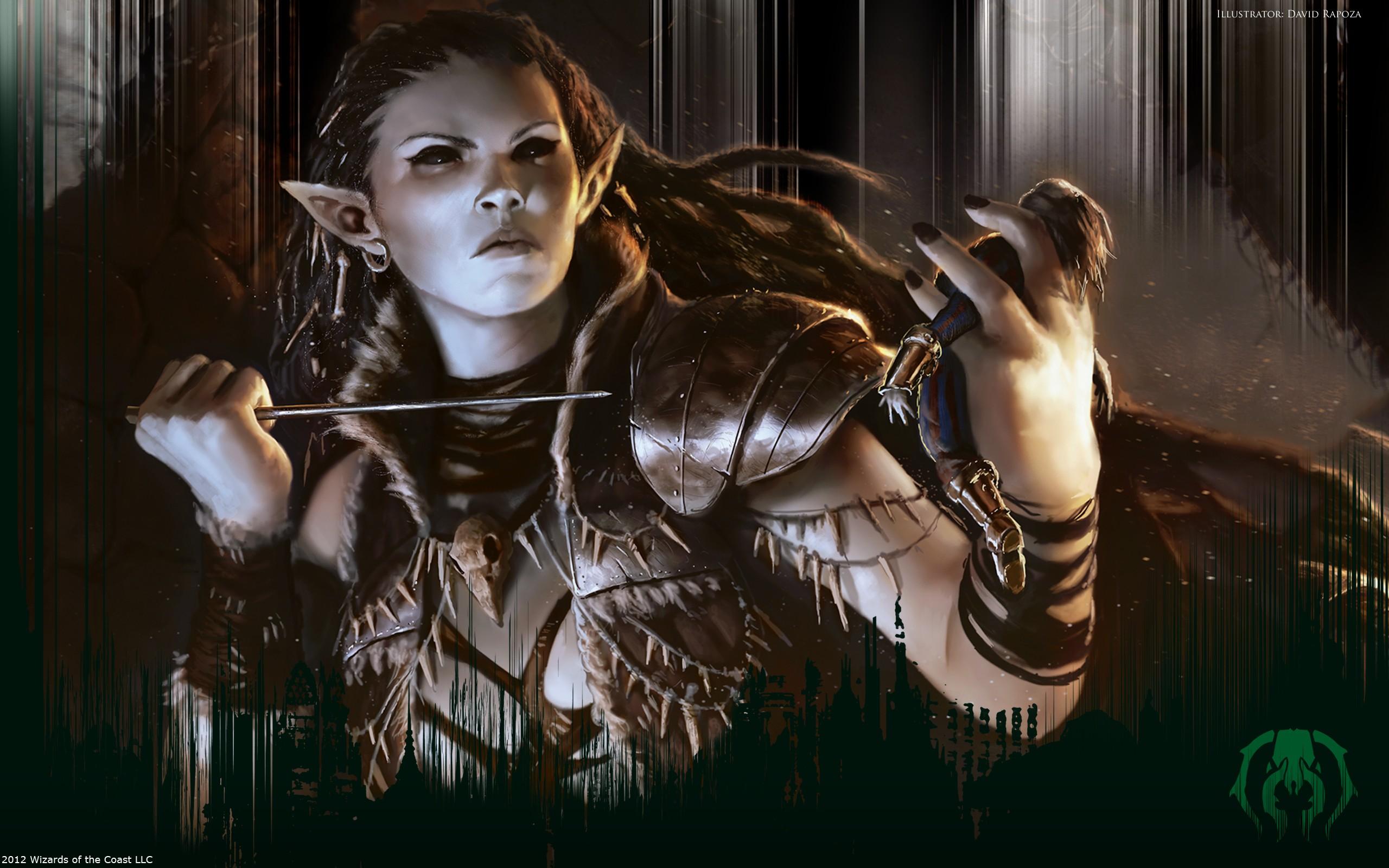 Dark Elf Voodoo Wallpapers Dark Elf Voodoo HD Wallpapers Dark 2560x1600