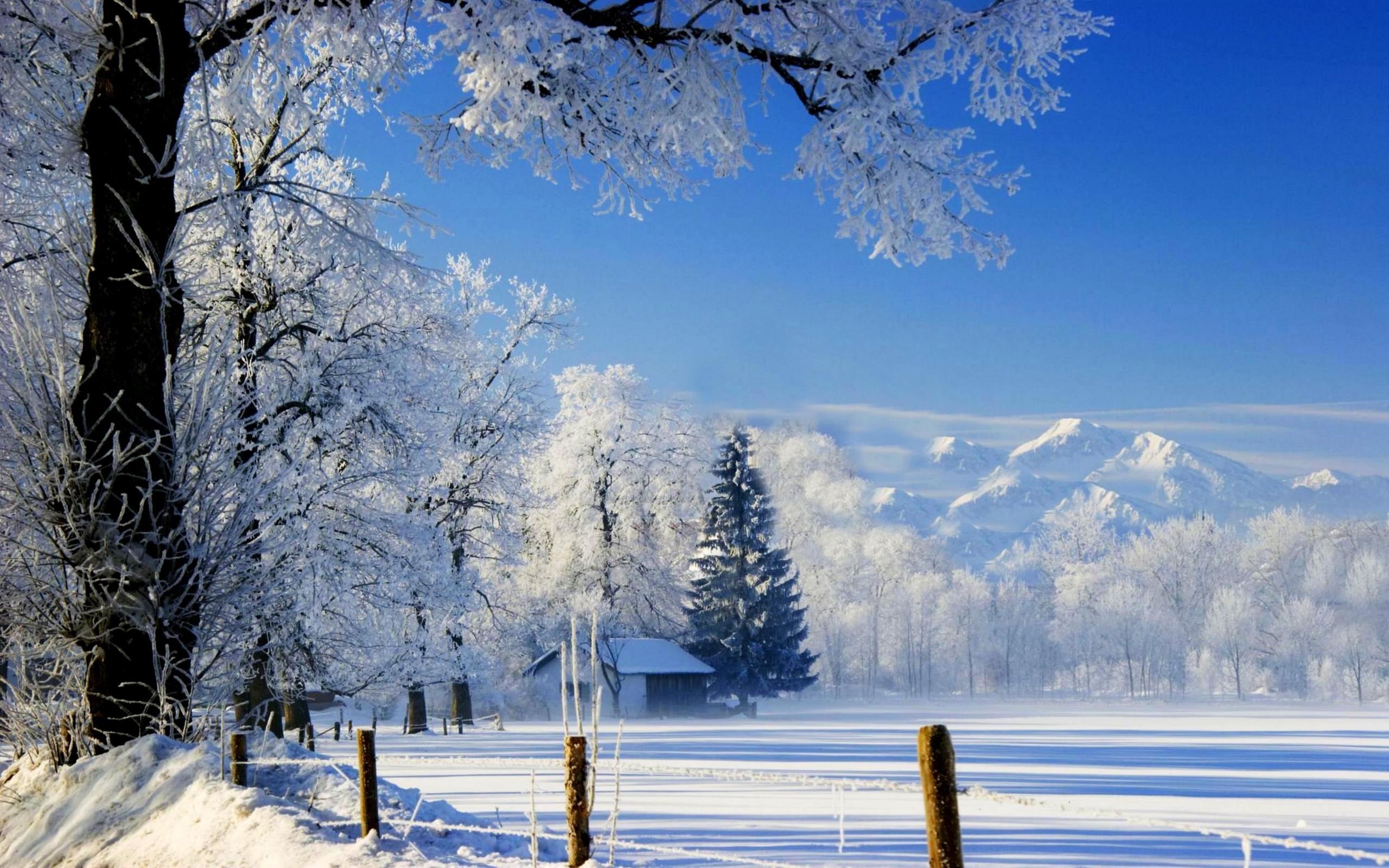 Image Gallery Snow Scenery 2560x1600