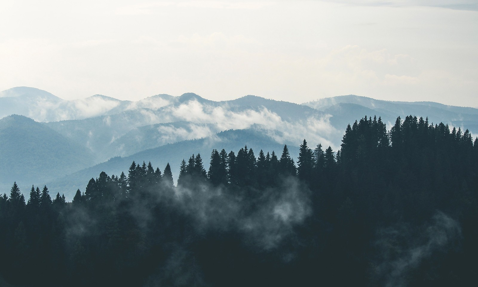 Mountains Clouds Forest Fog HD City Wallpapers Places 1600x960