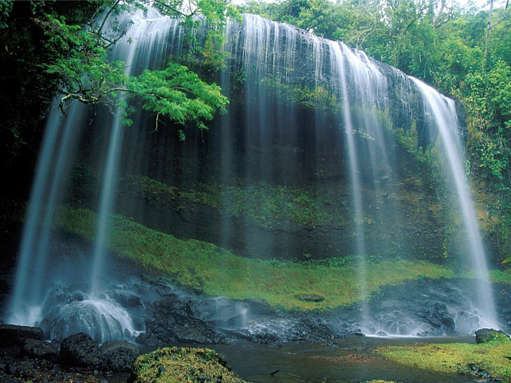 Top Ten WaterfallsFamous Waterfll WallpapersWaterfalls in India 1024x768