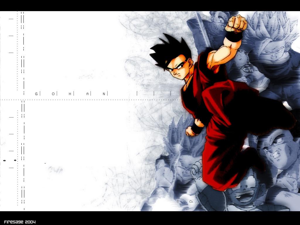 Gohan   Dragon Ball Z Wallpaper 25544348 1024x768