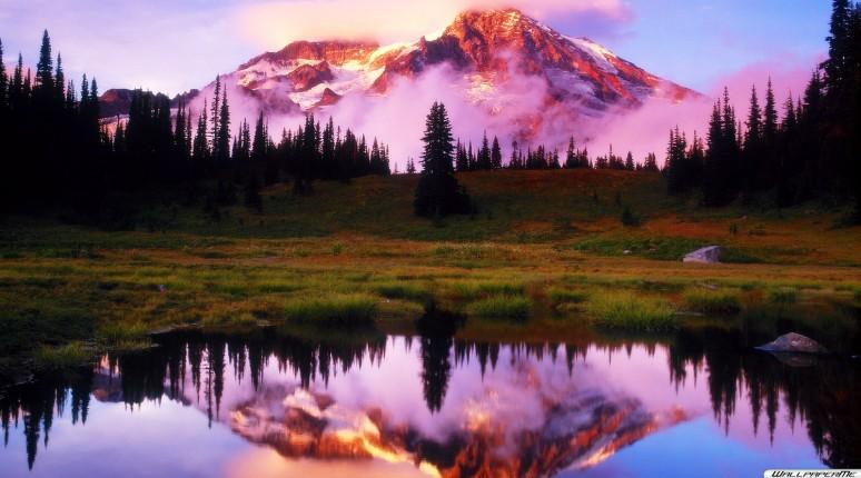 Sonnenuntergang Mount Rainier Wallpaper 774x430