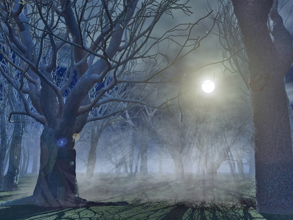Spooky Forest Wallpaper 22996 Hd Wallpapers Backgroundjpg 1024x768