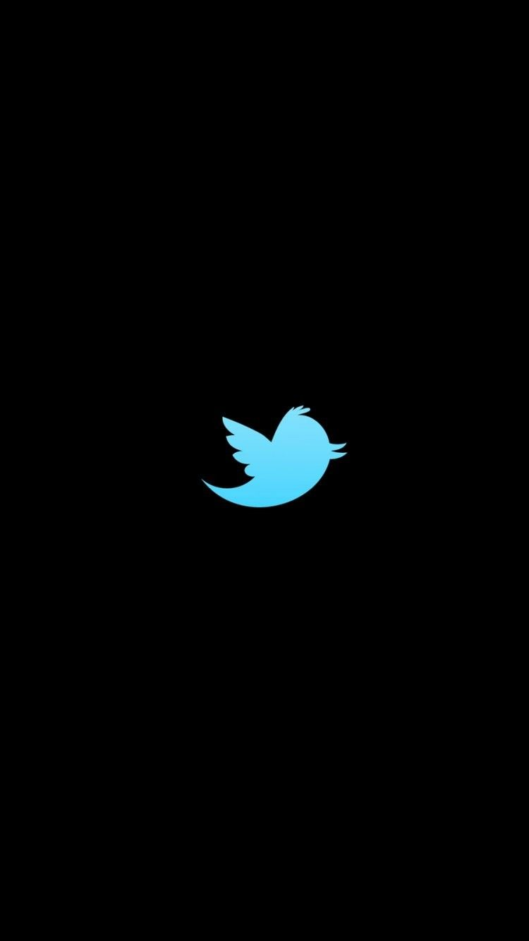 Twitter Logo iPhone 6 Wallpaper 33904   Logos iPhone 6 Wallpapers 750x1334