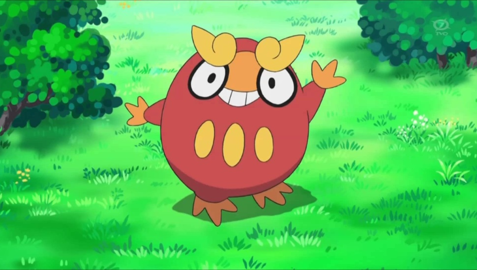 pokemon darumaka wallpaper and desktop background hd picture 40034 970x550