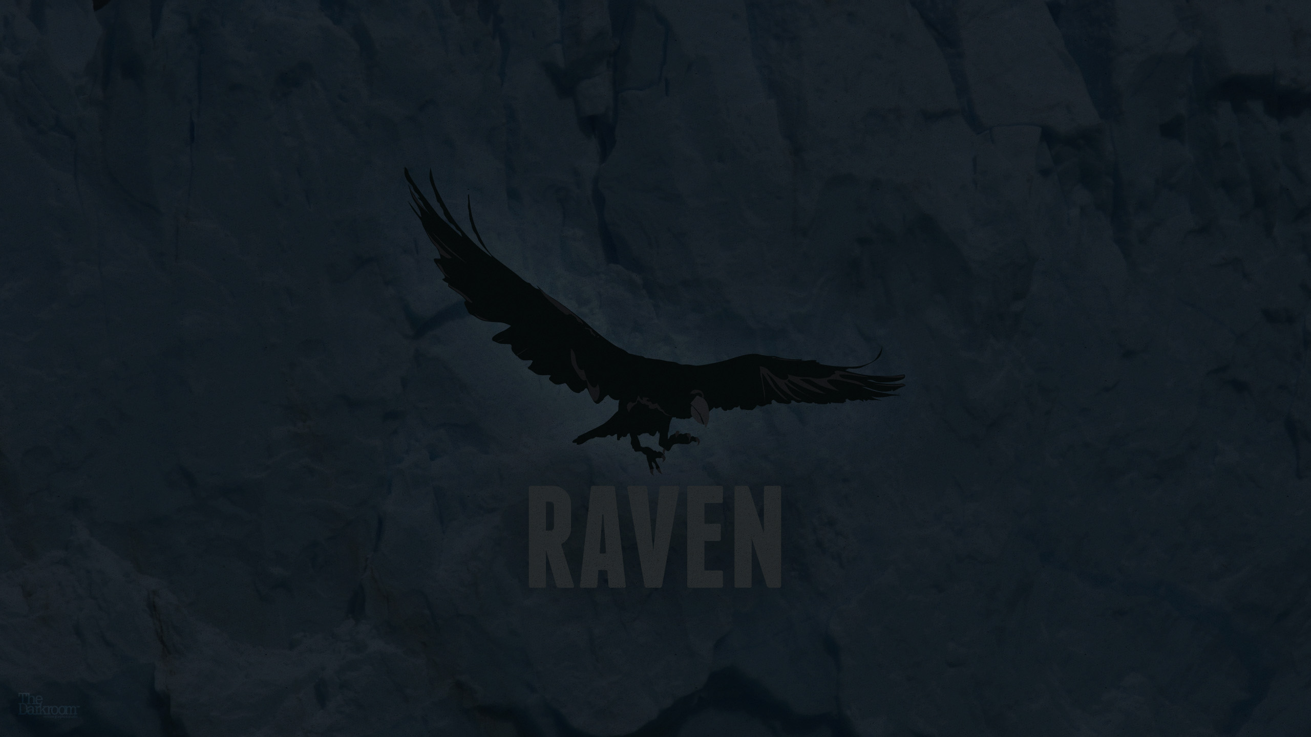 Custom HD 48 Raven Wallpapers Collection 2560x1440