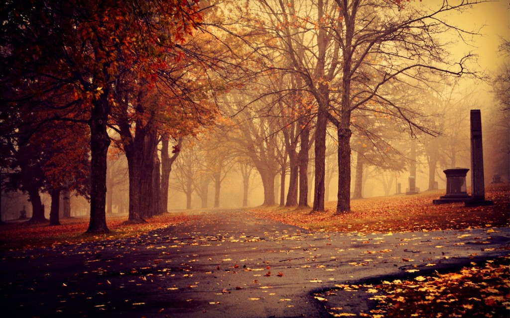 Desktop Wallpaper Fall Landscapes Nature 1024x640