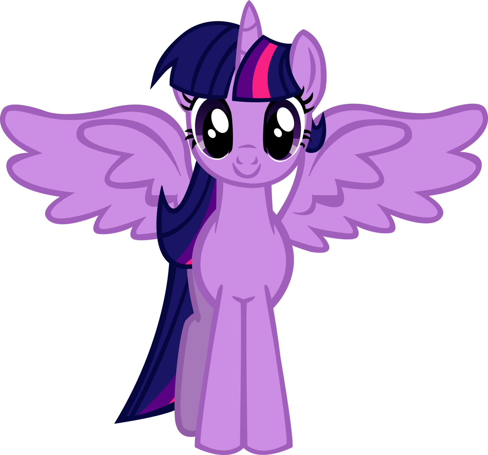 my little pony princess twilight sparkle Hot lovely wallpapers 1600x1492