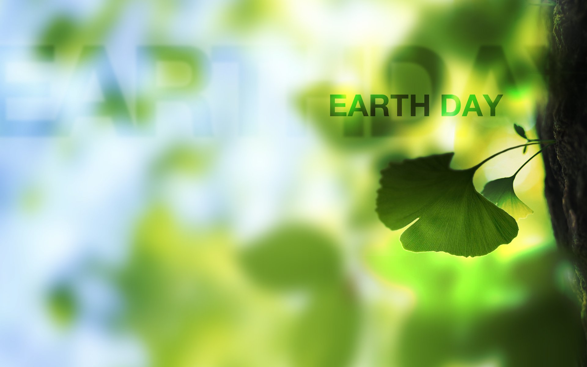 42 Earth Day HD Wallpapers Background Images 1920x1200