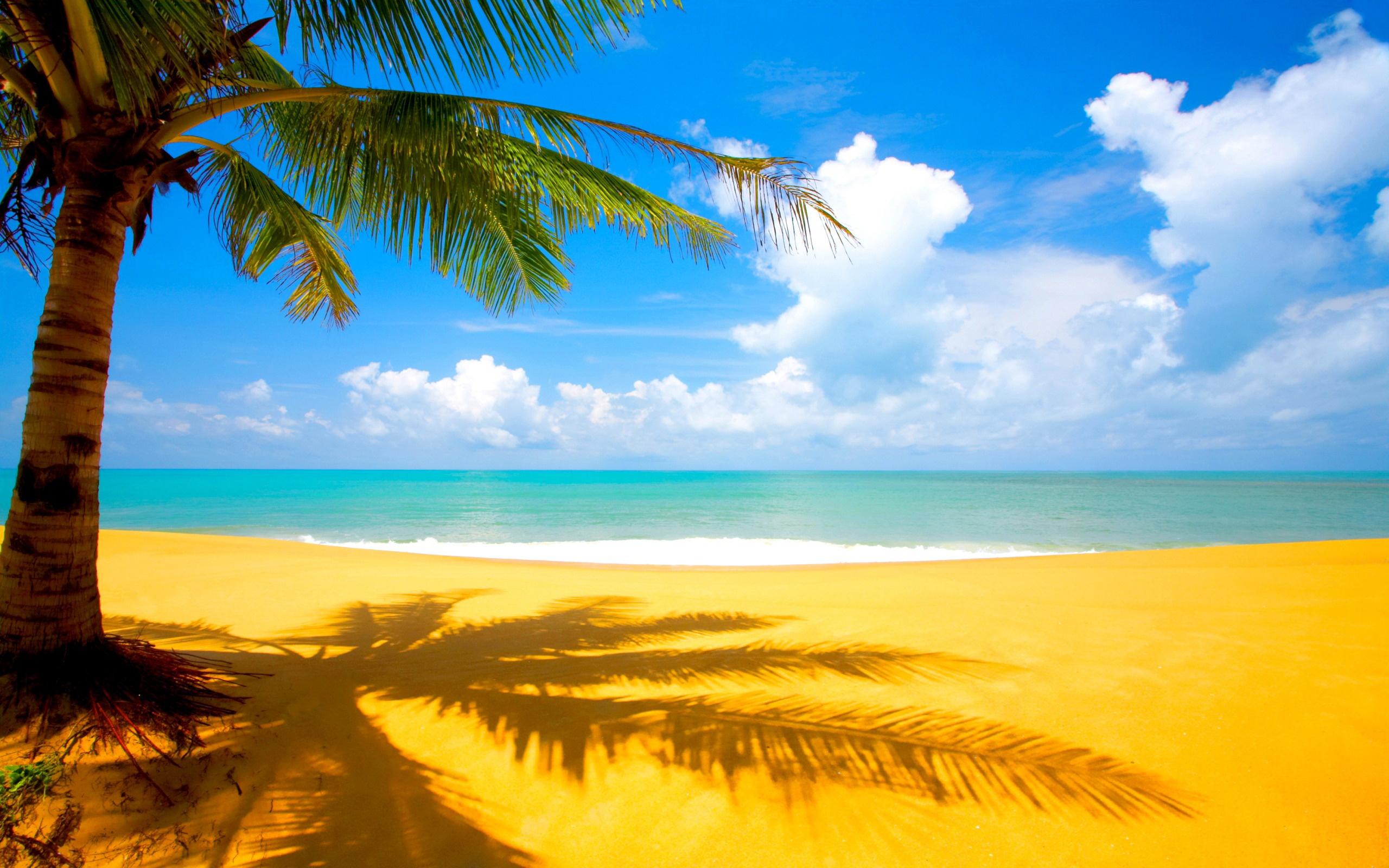 Ocean beach Desktop Wallpapers FREE on Latorocom 2560x1600