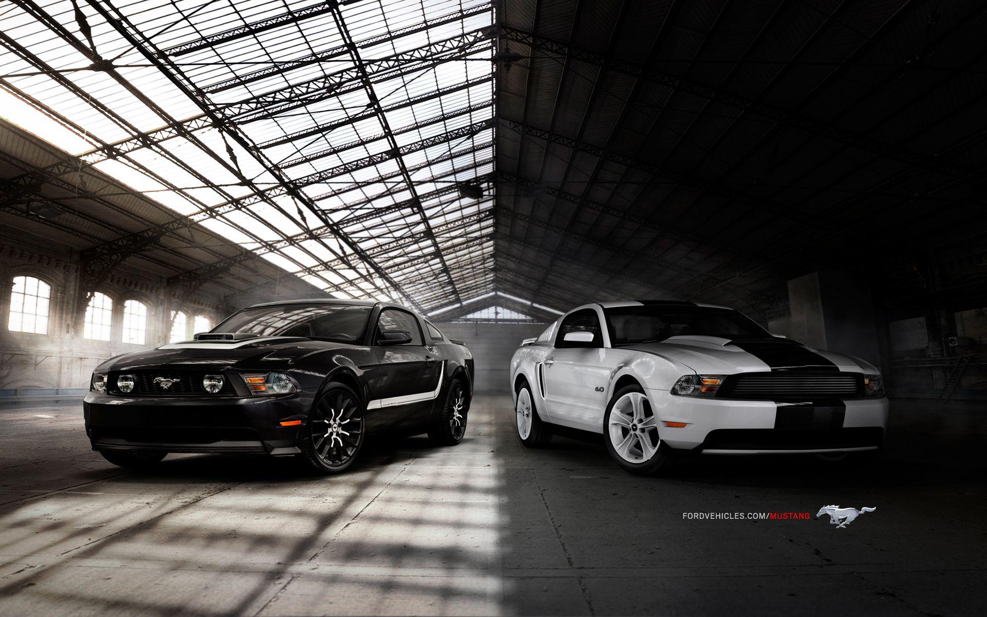 Ford Mustang GT White Black Car Ford Wallpaper Car Wallpaper 1920x1200