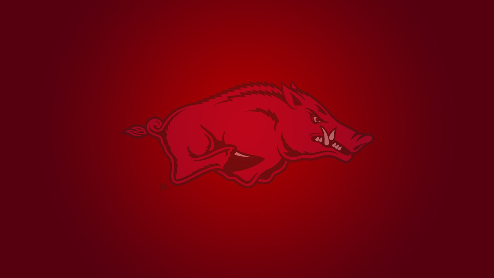 razorback wallpaper for android