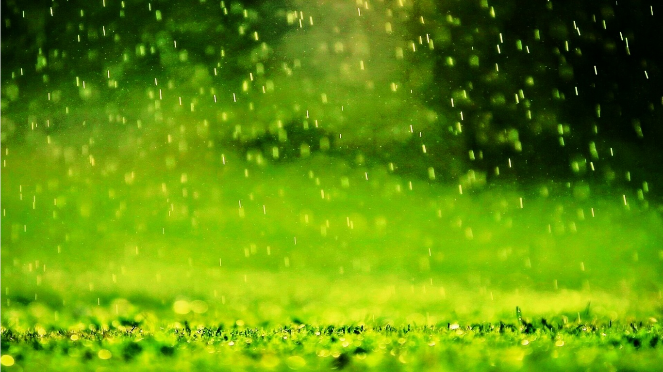 falling rain wallpapers wallpapersafari