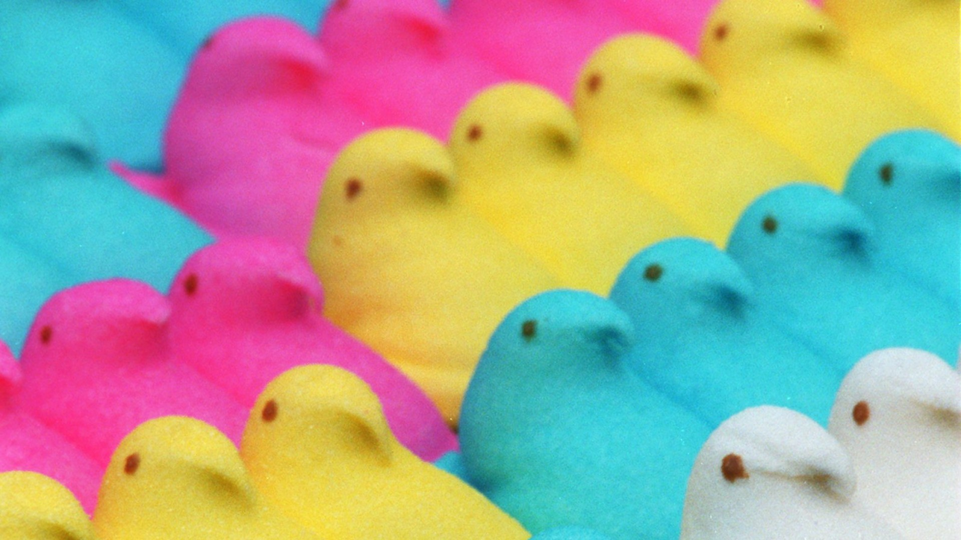 peeps easter candy desktop wallpaper-#3