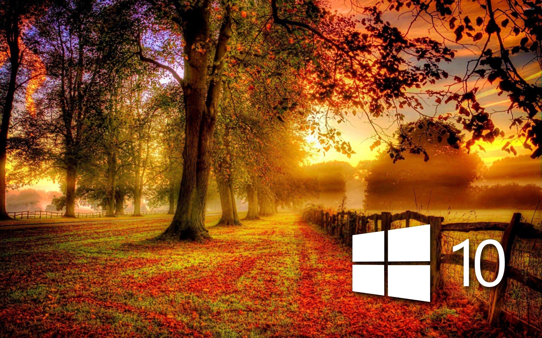 Windows Autumn Desktop Wallpaper - WallpaperSafari