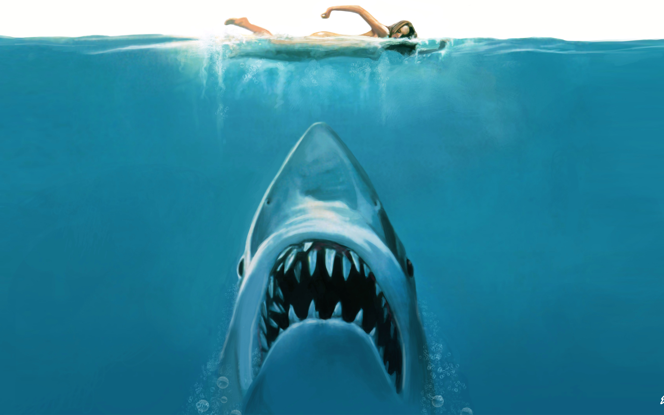 Обои на рабочий стол акулы на весь экран бесплатно