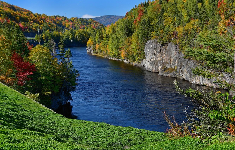 Wallpaper autumn forest river rocks Canada Canada Humber 1332x850