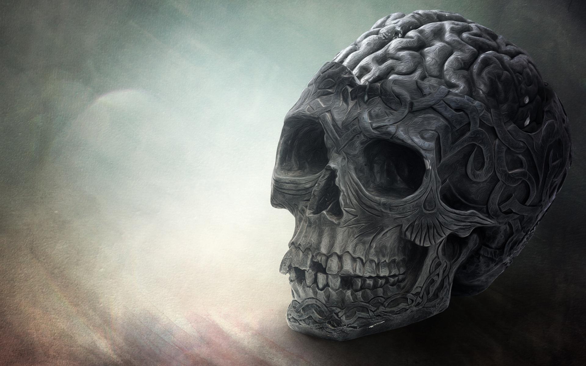 Brain Skull Wallpapers HD Wallpapers 1920x1200
