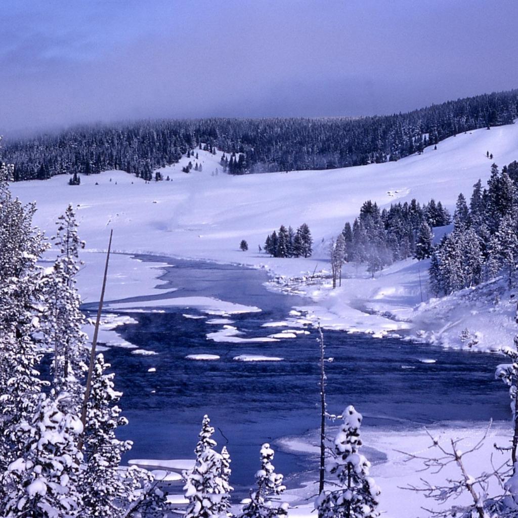 Winter Wallpaper: Winter In Yellowstone Wallpaper