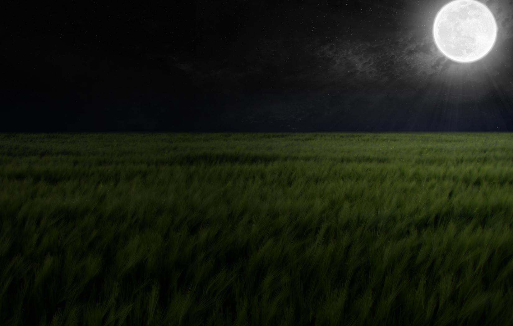 Dark Rye Wallpaper and Background Image 1650x1050 ID100453 1650x1050