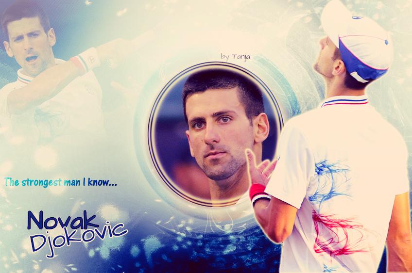 Novak Djokovic Wallpaper 848x563