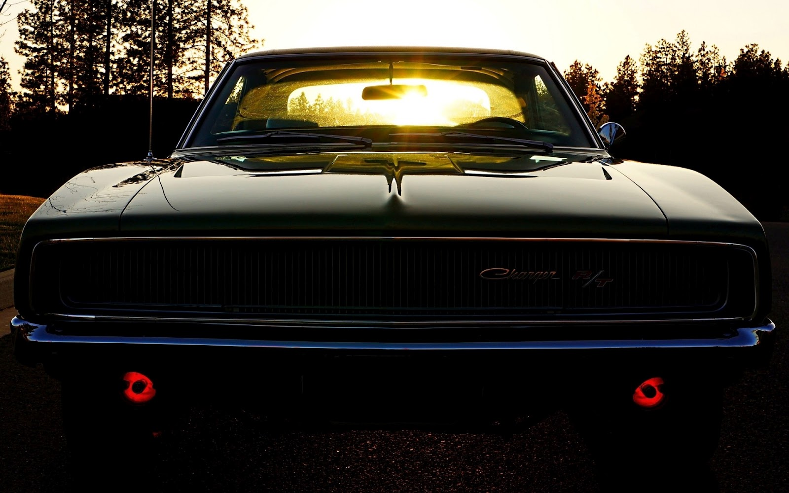 Dodge Challenger Muscle Car Shining Sunlights Photography HD Desktop 1600x1000
