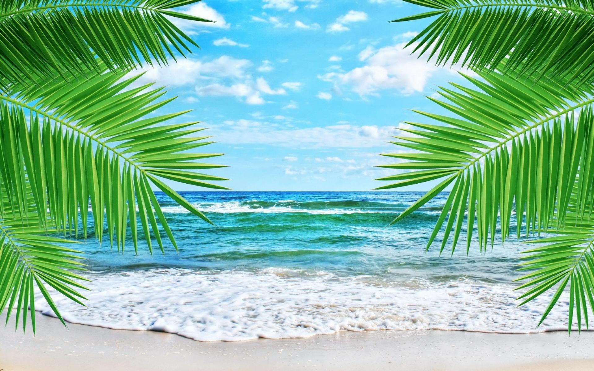 Hd Tropical Island Beach Paradise Wallpapers And Backgrounds: HD Tropical Wallpaper 1680x1050
