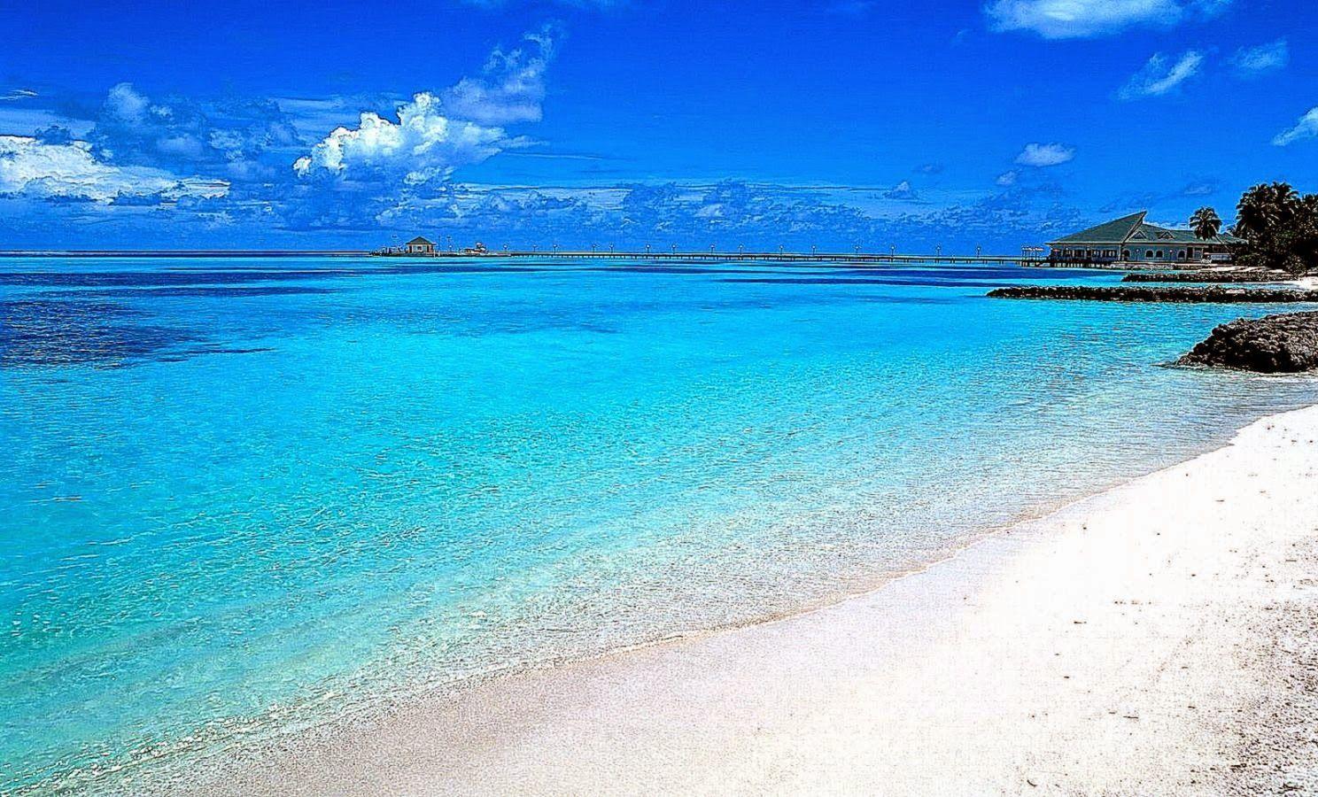 Free Download Beach Scenes Desktop Wallpapers Top Beach
