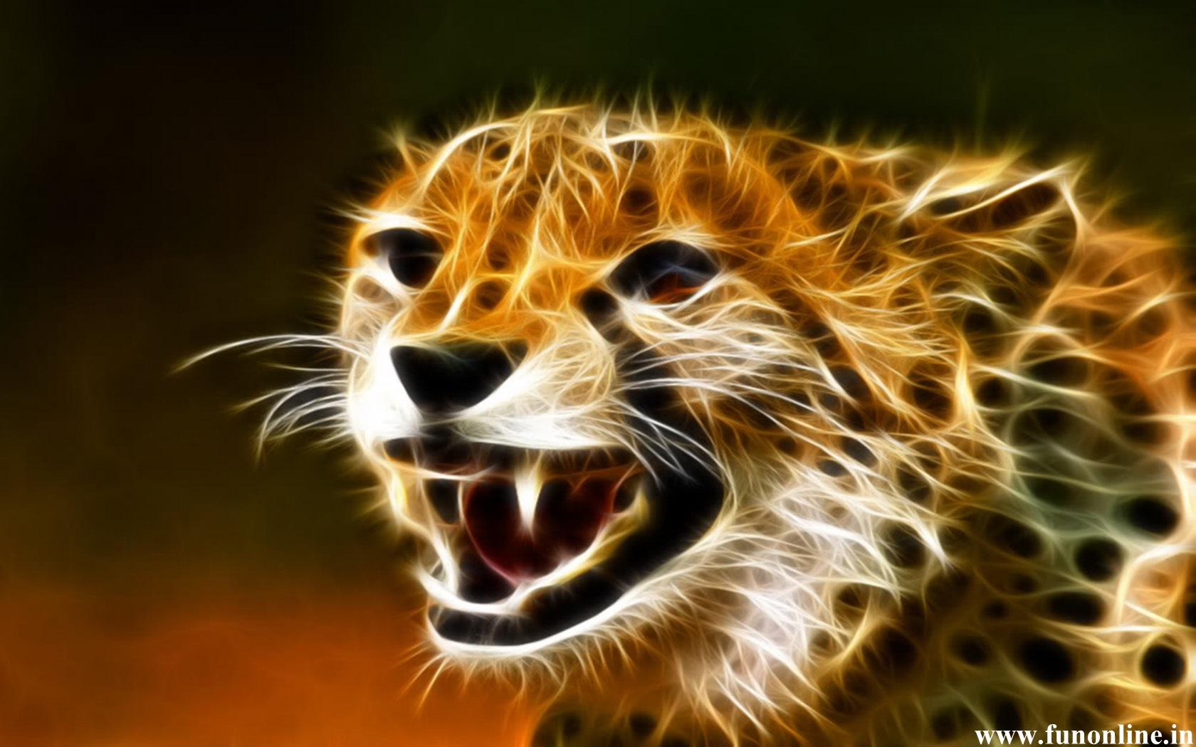 baby cheetah wallpaper wallpapersafari
