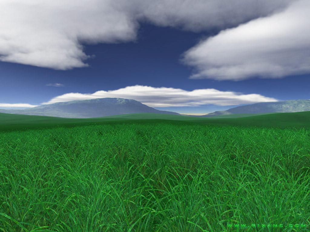 green nature desktop wallpaper   wwwwallpapers in hdcom 1024x768