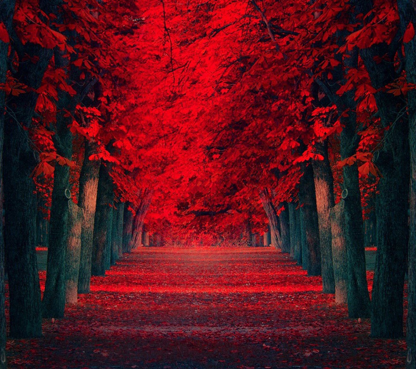 Red Nature Wallpaper