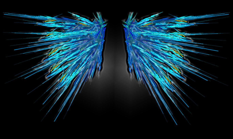 angel wing wallpaper   Quotekocom 1370x822