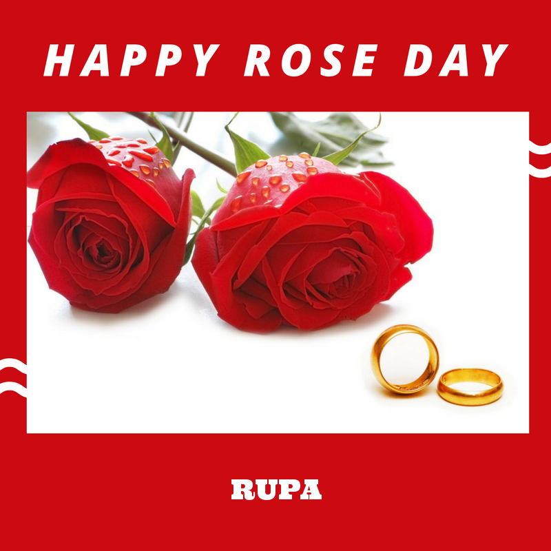 Free Download Happy Rose Day Rupa Name Wallpaper Rupa Name Rose Day 800x800 For Your Desktop Mobile Tablet Explore 96 Happy Rose Day Wallpapers Happy Rose Day Wallpapers Happy