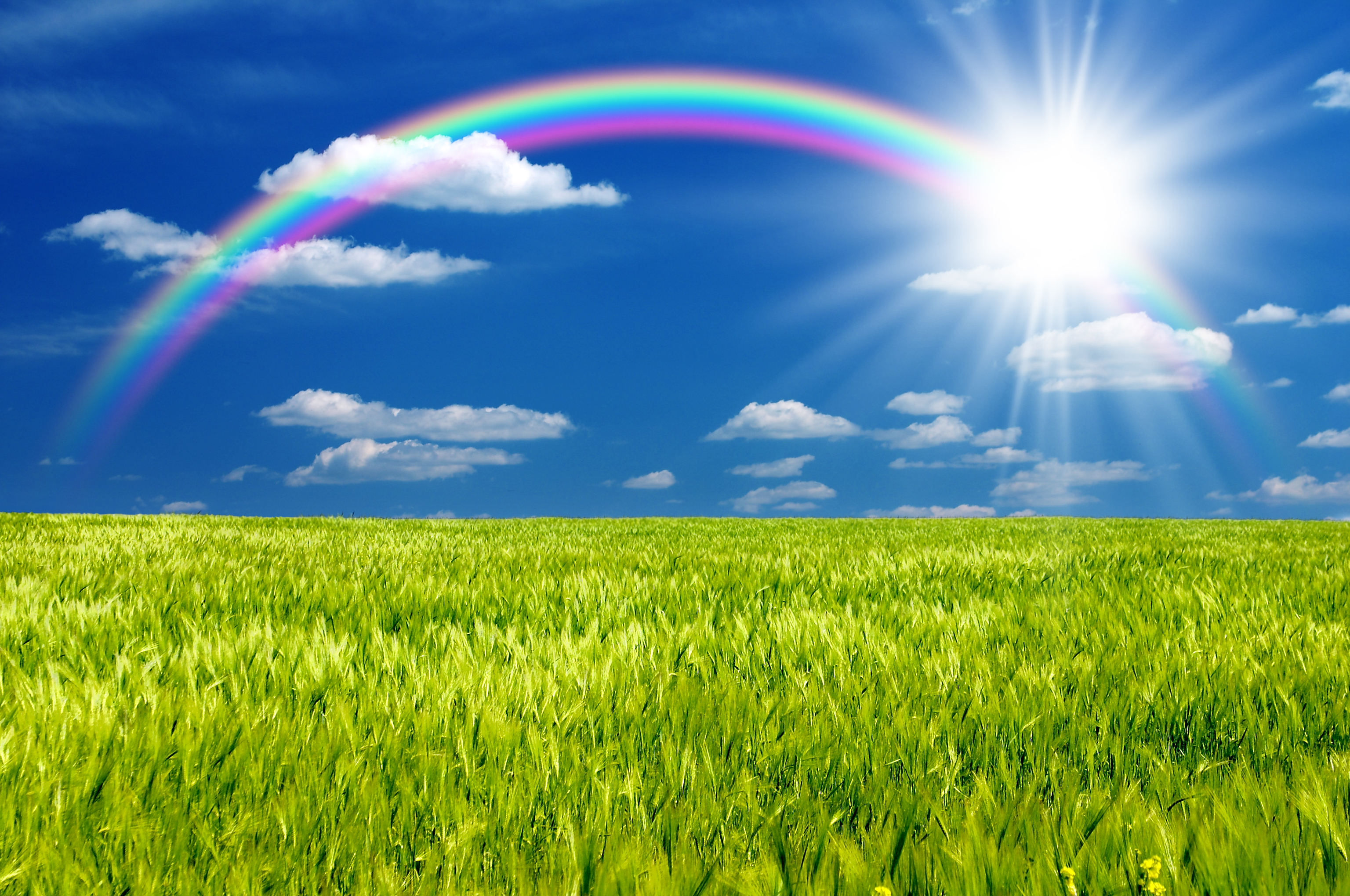 47+ Beautiful Rainbow Wallpaper on WallpaperSafari