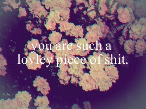 hipster quotes on Tumblr 500x375