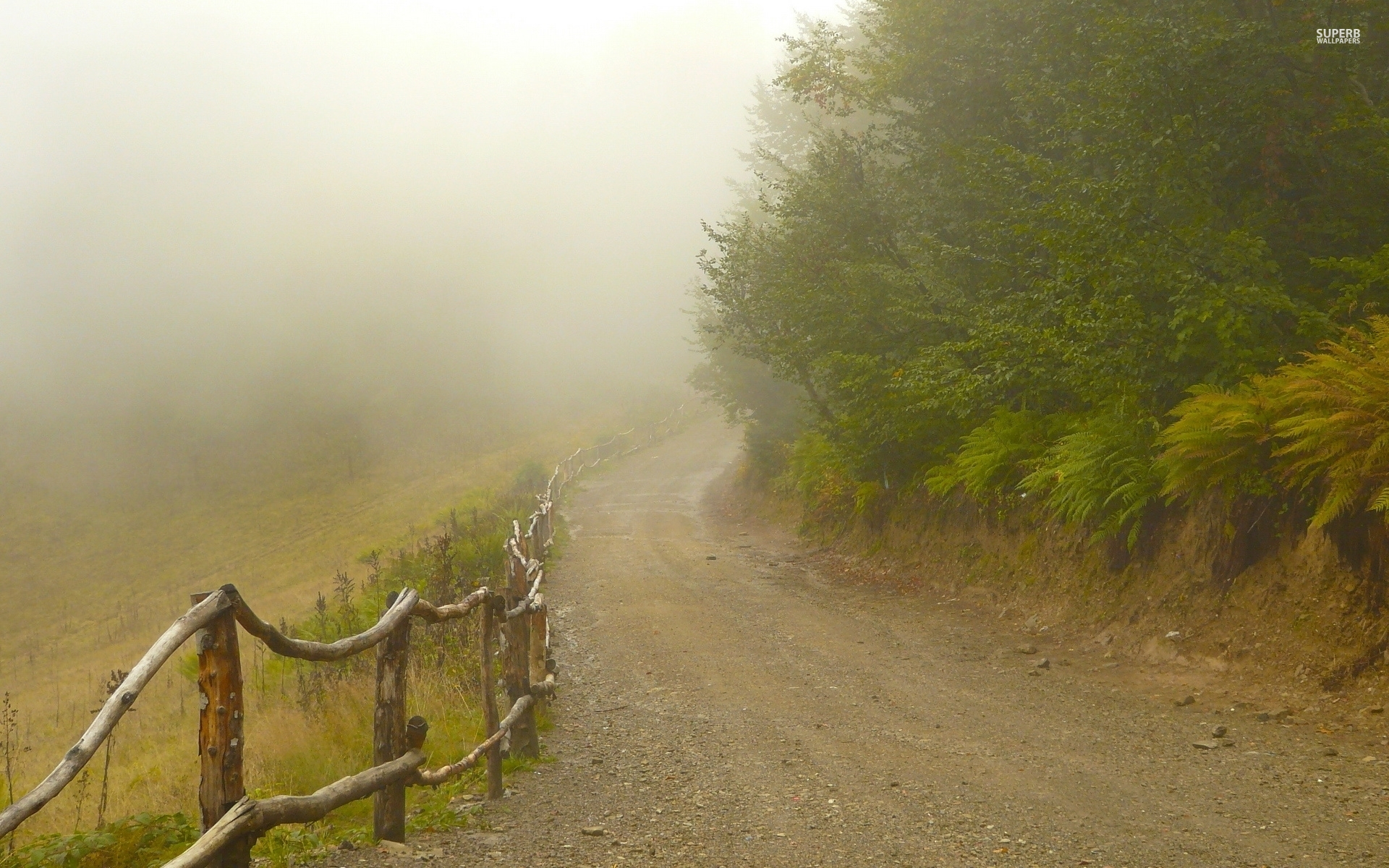 Foggy Path Fences Forest wallpapers Foggy Path Fences Forest 1920x1200
