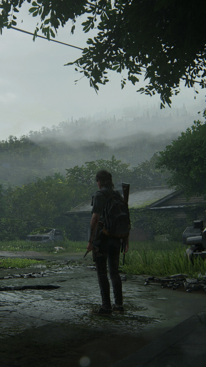 Last Of Us Part 2 HD 5K Wallpapers HD Images em 2020 Arte de 714x1275