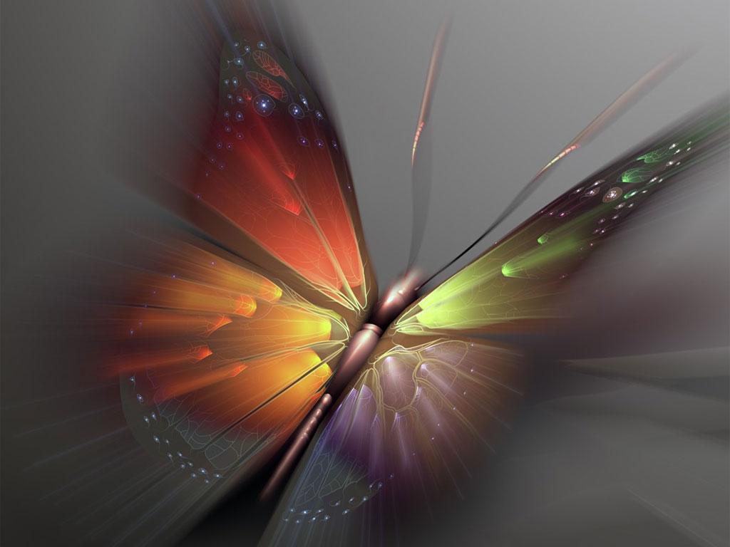 Imagini Artistice pentru Desktop   Fluturi   Poze Imagini Desktop 1024x768