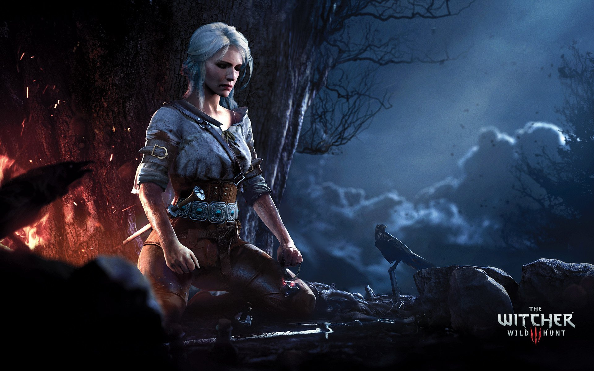 113 Ciri The Witcher HD Wallpapers Background Images 1920x1200