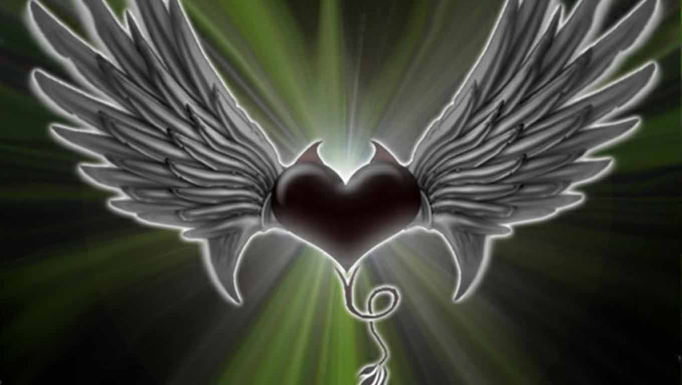 Wings Heart HD Wallpapers Prime Wallpapers 1360x768
