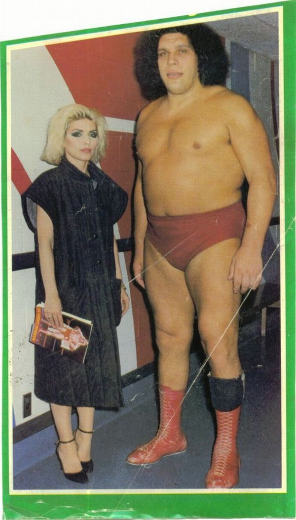The Giant Man Andre   The Legendary Giant in the WWE 600x1053
