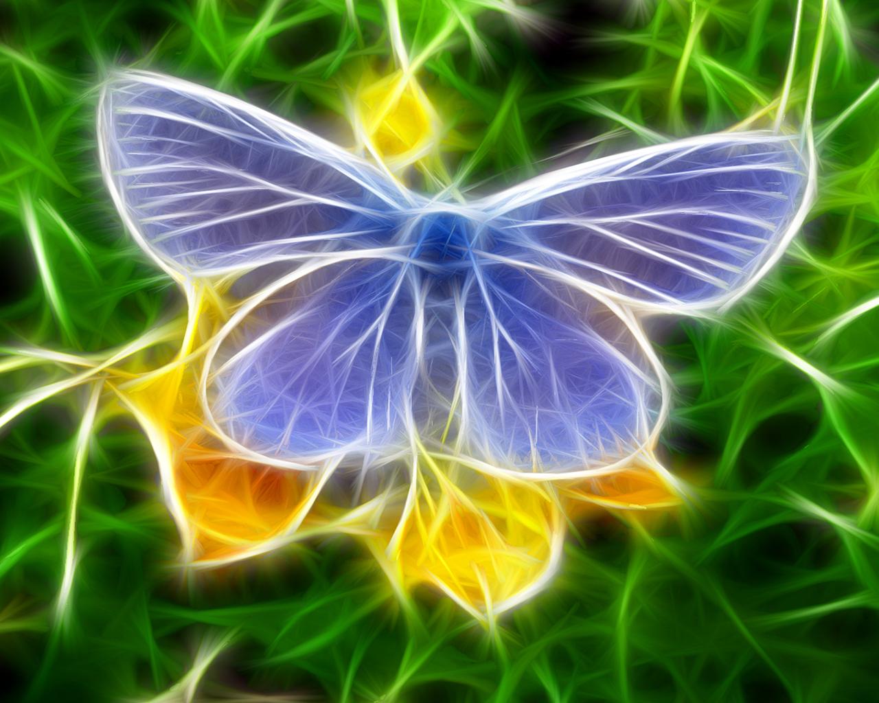 Wallpapers Background Butterfly Hd Wallpaper Butterfly 3d Wallpapers 1280x1024