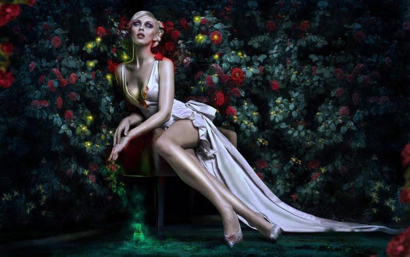 High resolution queen of hearts desktoplaptop wallpaper Listed in 800x501