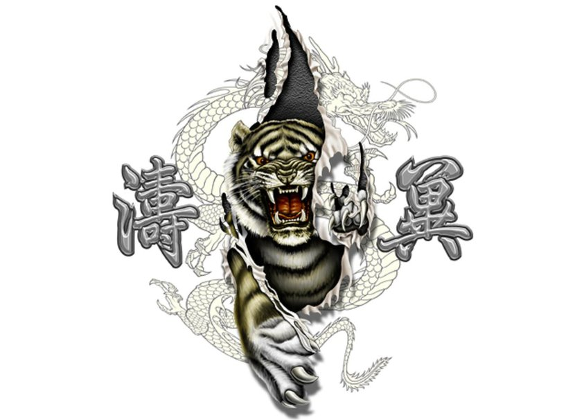 Pictures tiger dragon yin and yang wallpaper download the tiger 843x606