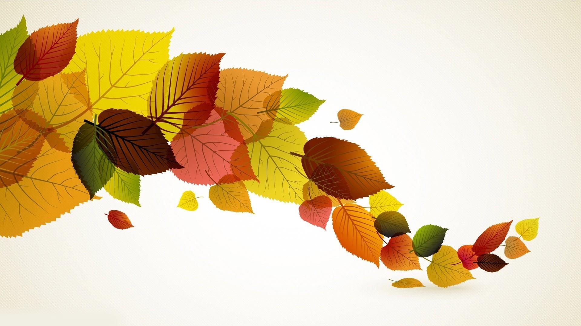 Autumn leaves wallpaper   661443 1920x1080