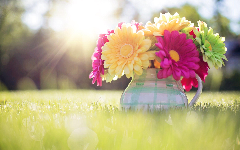 Cute Spring Desktop Wallpapers   Top Cute Spring Desktop 2880x1800