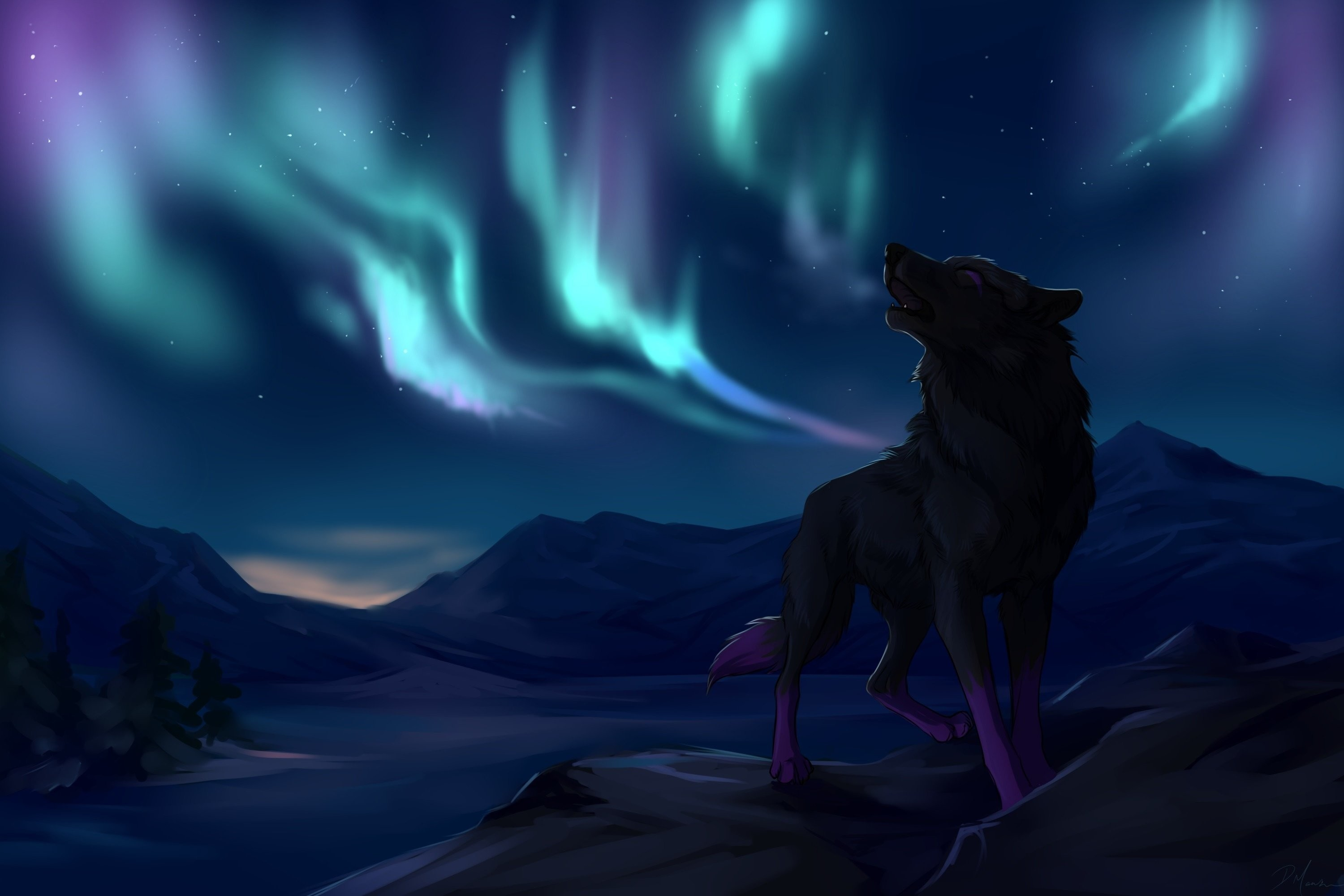 71 Cool Wolf Wallpapers on WallpaperPlay 3000x2000
