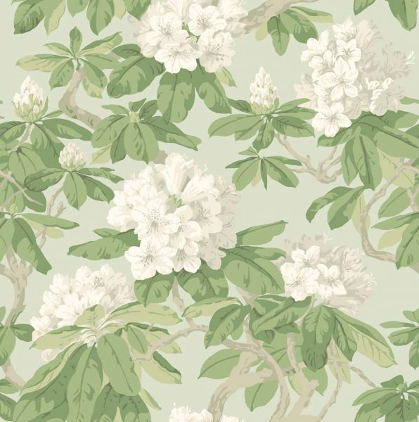 Cole Son   Folie   Cole and Son Bourlie 99 4022   Select Wallpaper 596x600